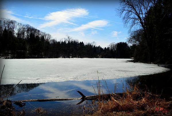 Winter into Spring in michigan